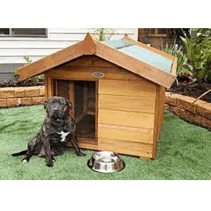 Kennels and Outdoors